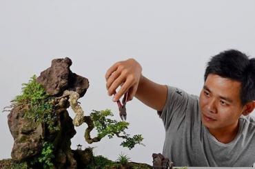Một số tác phẩm tiểu cảnh - Non bộ đẹp của Trần Minh